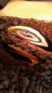 agate-sand-candles-gallery-17